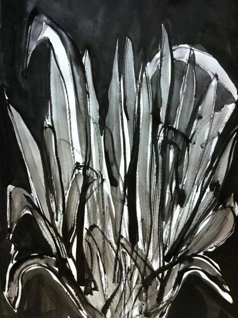 Bush, 2013. Sumi Ink on paper,  22,5x30cm. (AVAILABLE) CARINA SCHUBERT