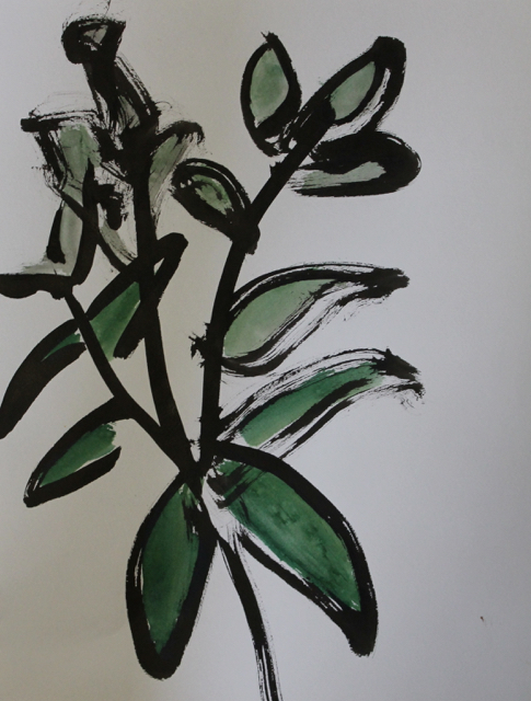 Tiny Plant, 2013. Sumi Ink on paper,  26,5x35,5cm. (AVAILABLE) CARINA SCHUBERT