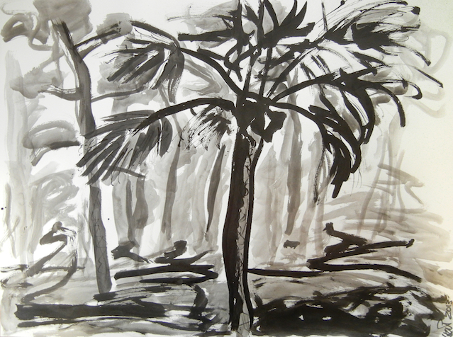 Southern Trees, 2013. Sumi Ink on paper, 61x45,5cm. (AVAILABLE) CARINA SCHUBERT