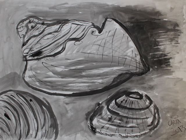 Shells, 2013. Sumi Ink on paper, 61x45,5cm. (AVAILABLE) CARINA SCHUBERT