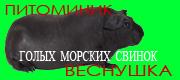 Питомник Веснушка