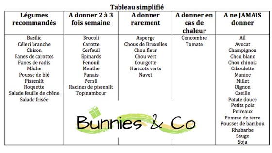 Bunnies and co lapin légumes