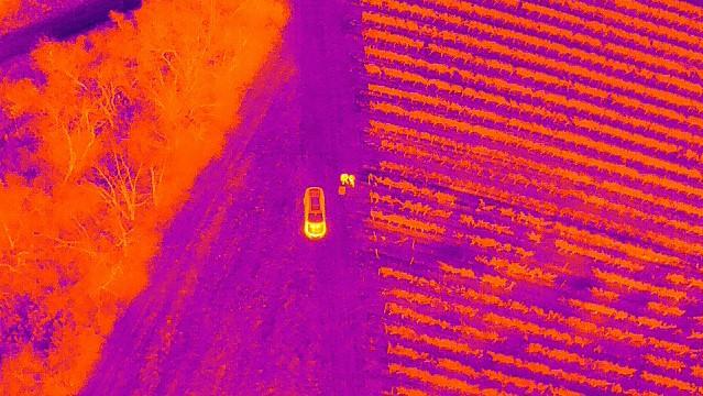 Wärmebild aus 100m Flughöhe