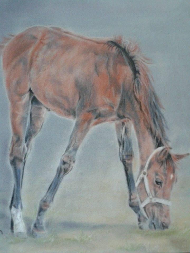Pastellmalerei - Katja Mohr - Mohrpastell05