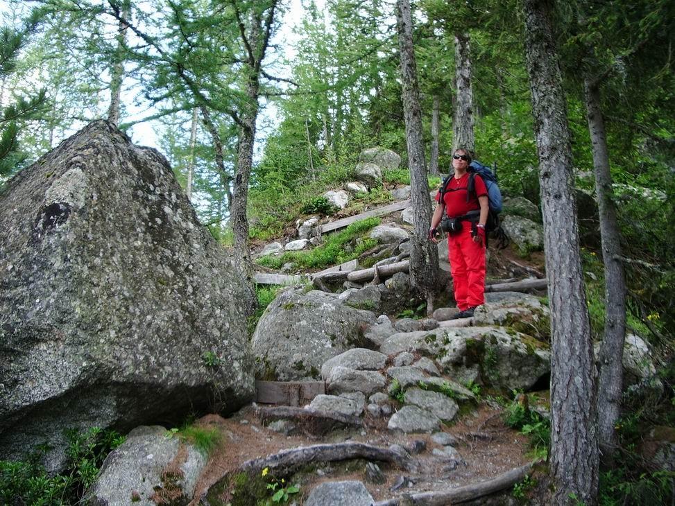 le sentier qui redescend sur Chamonix (2h30 de descente)