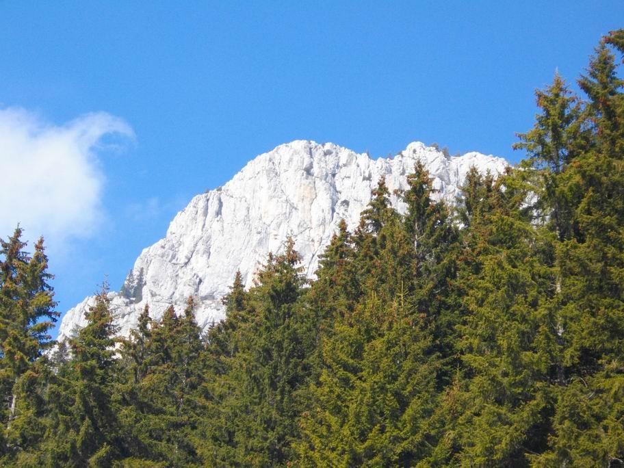 roche de Leschaux - le sommet