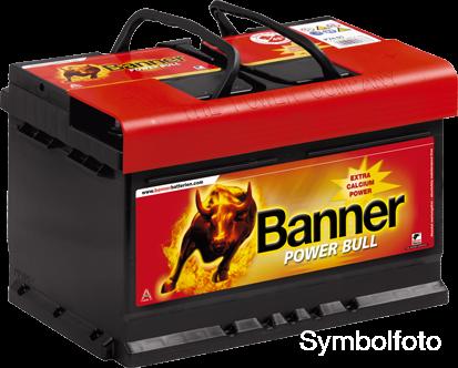 banner power bull p8820 batterie zentrum. Black Bedroom Furniture Sets. Home Design Ideas