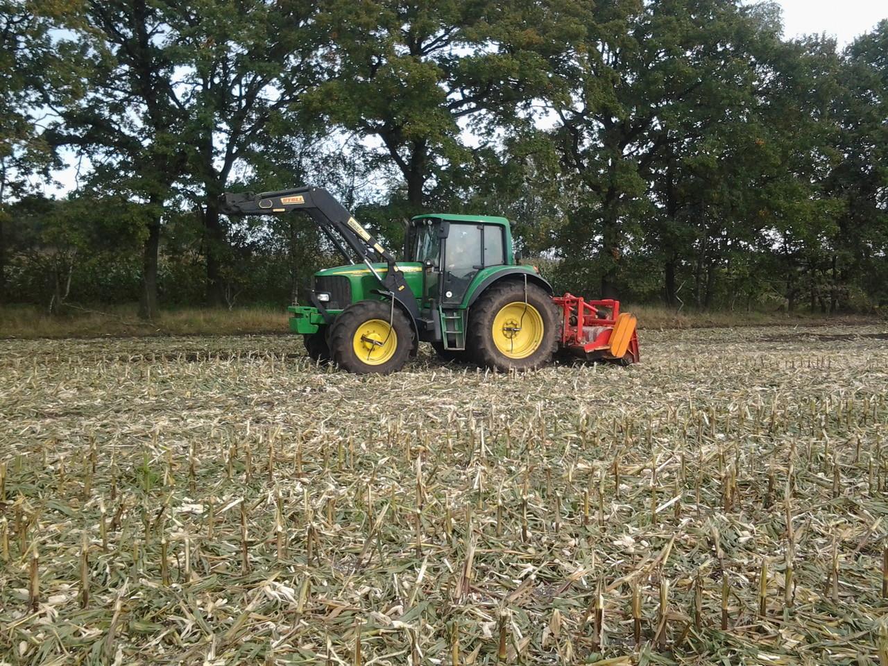 Maisstoppel mulchen
