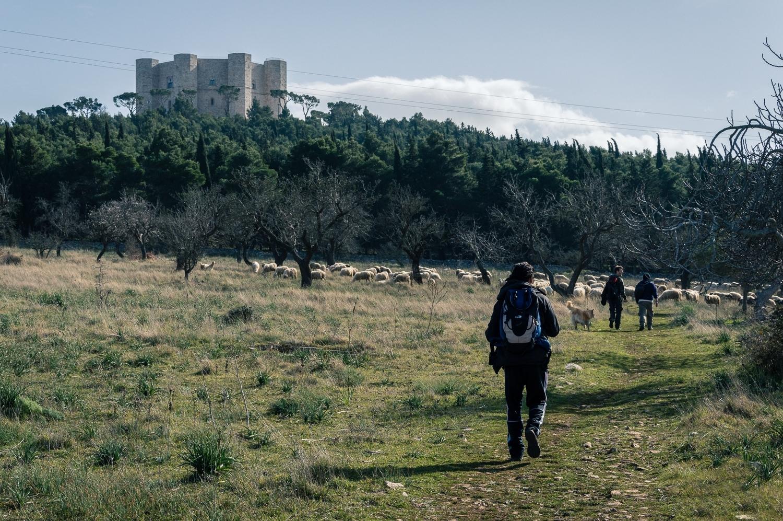 Le vie di Castel del Monte: Parco Nazionale Alta Murgia