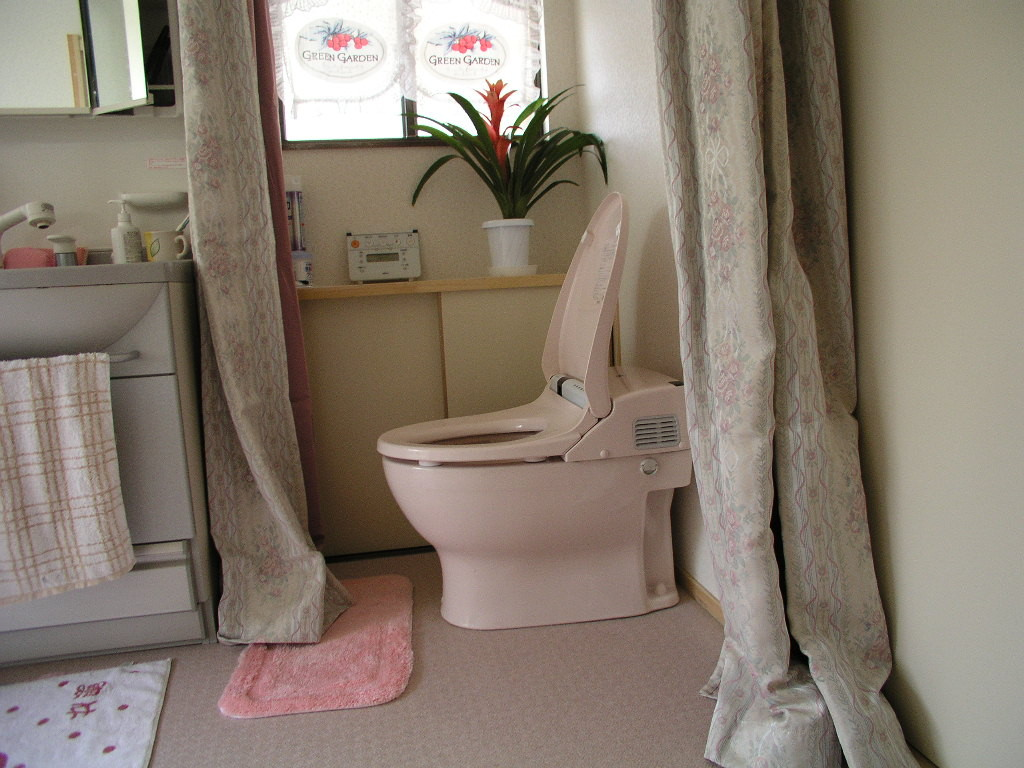 壁を撤去して広い空間を確保 洗面台を手摺代わりに、カーテンでの仕切り