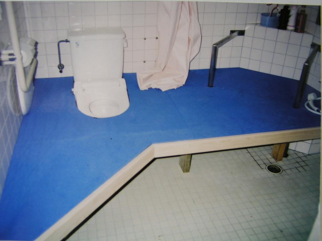 トイレ・シャワー・脱衣 場所の確定とクッションの種類の選択〔すべりの具合〕