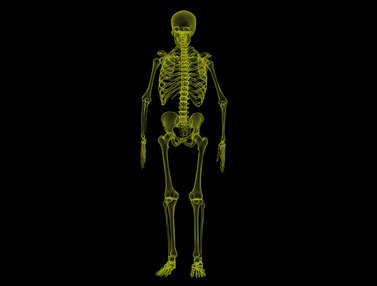 krav maga : la colonne vertébrale
