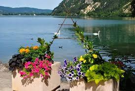 lac de Nantua en été