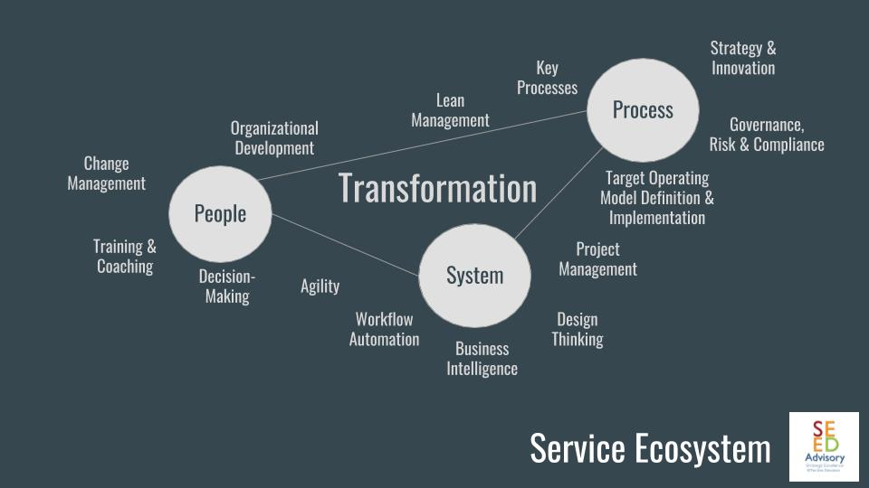 SEED ADVISORY - Transformation Consulting Services Ecosystem