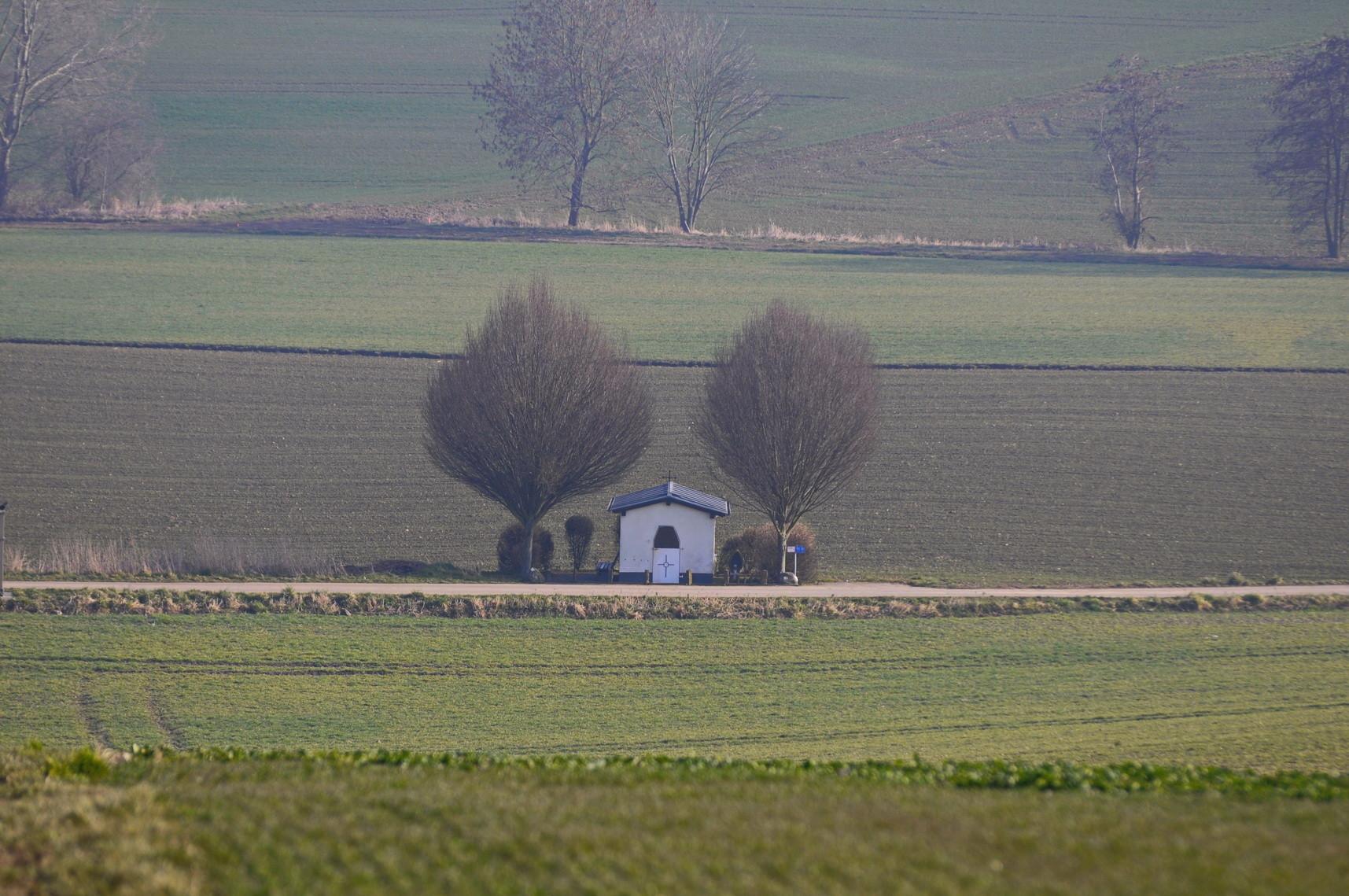 Eifel, Fotografie, Natur,