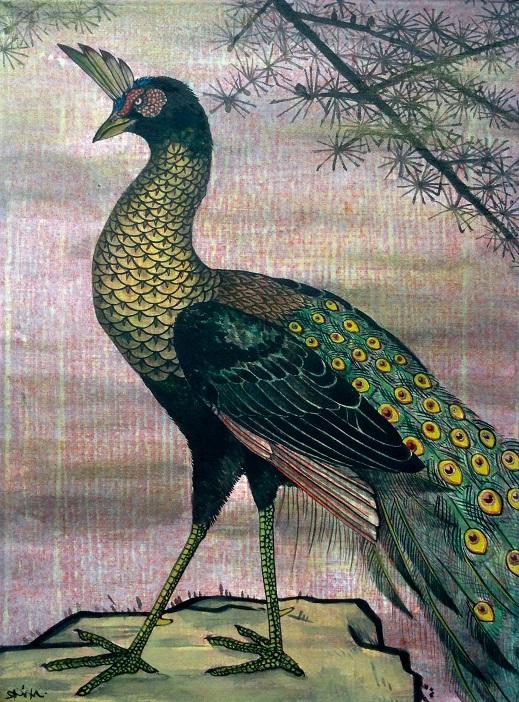 出口雄樹 孔雀 / Yuki Ideguchi Peacock