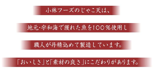 小林フーズのじゃこ天は、地元・宇和海で獲れた魚を100%使用し、職人が丹精込めて製造しています。