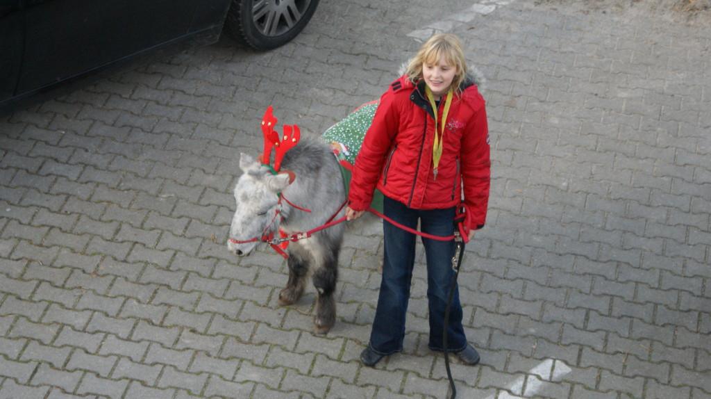 Pegasus wünscht Frohe Weihnachten