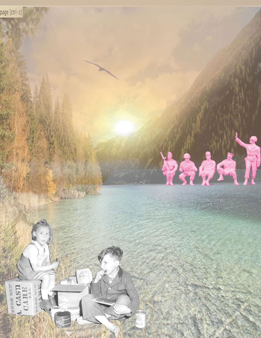 peace Austria, C-print, Digitale Collagen, Spiegelfolie, auf einer Platte fixiert, 21,6 x 28 cm, ICW und Leslie Fry, 2009