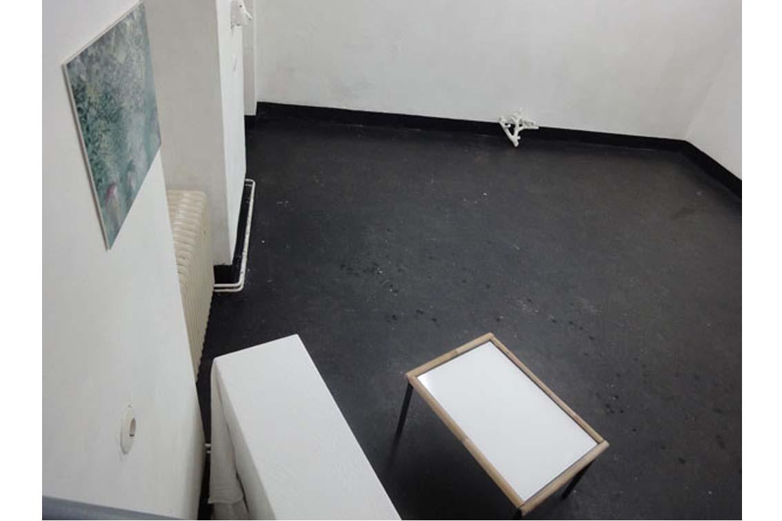 Installation Corals Merging and Emerging, exhibition, ICW und Tessa Miller, 2013