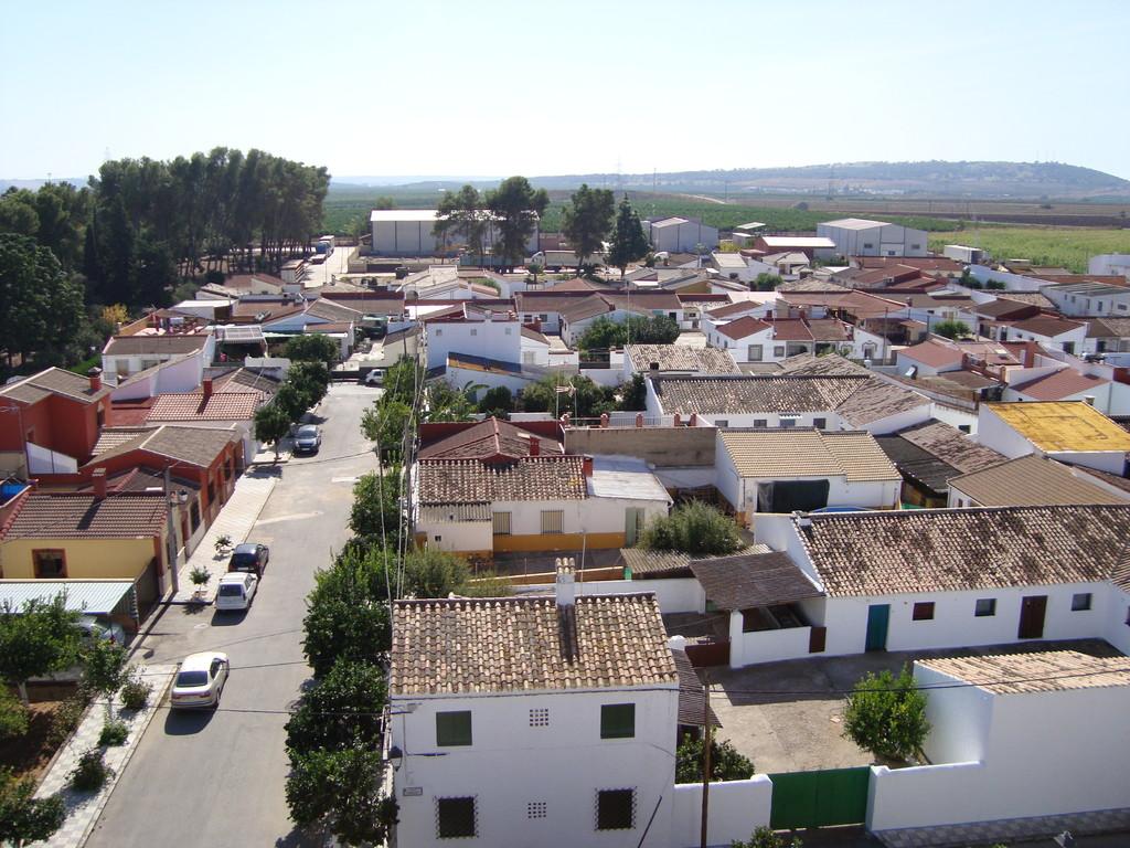 Vista desde la torre hacia el Sur