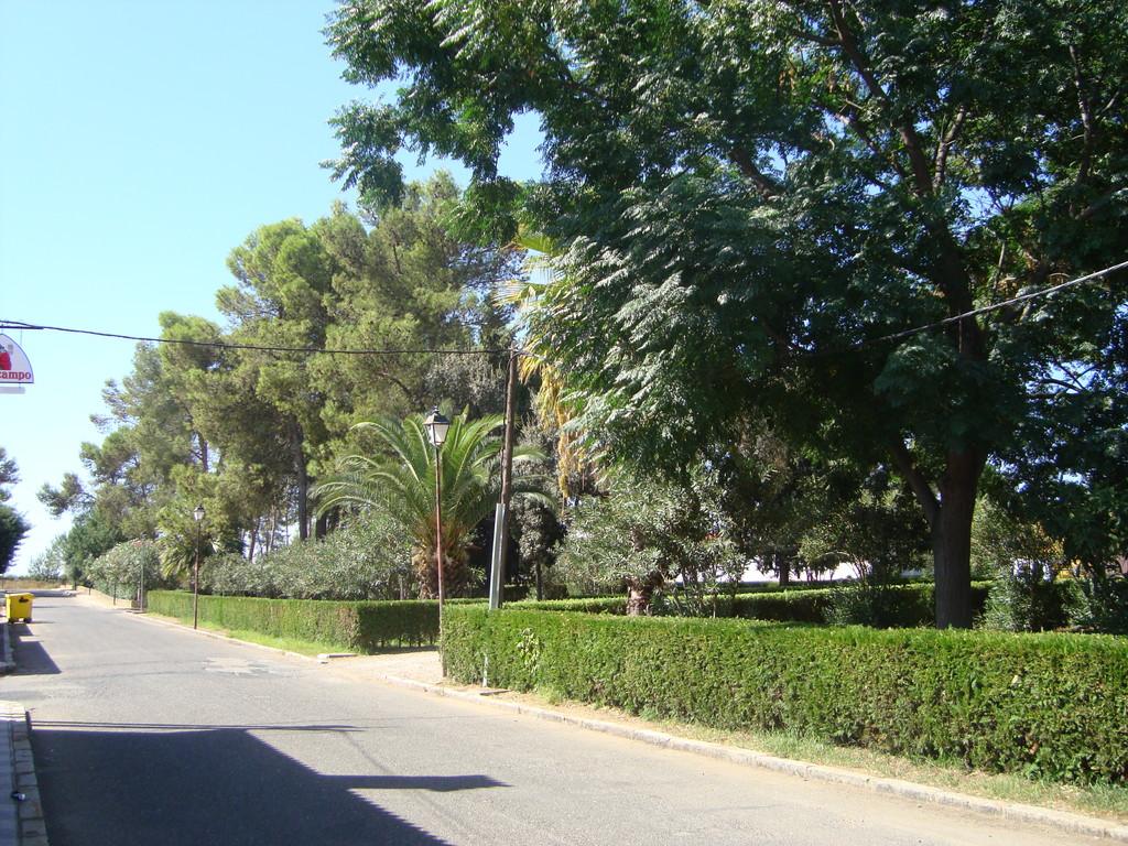 Jardines de la Calle Mayor