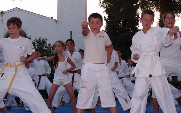 Exhibición de Kárate en Mesas del Guadalora (30-07-2010)