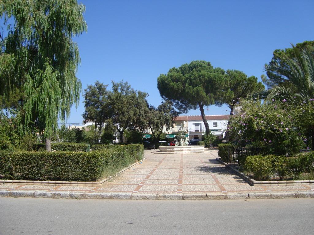 Jardines de la Plaza Mayor (visto desde el Ayuntamiento)