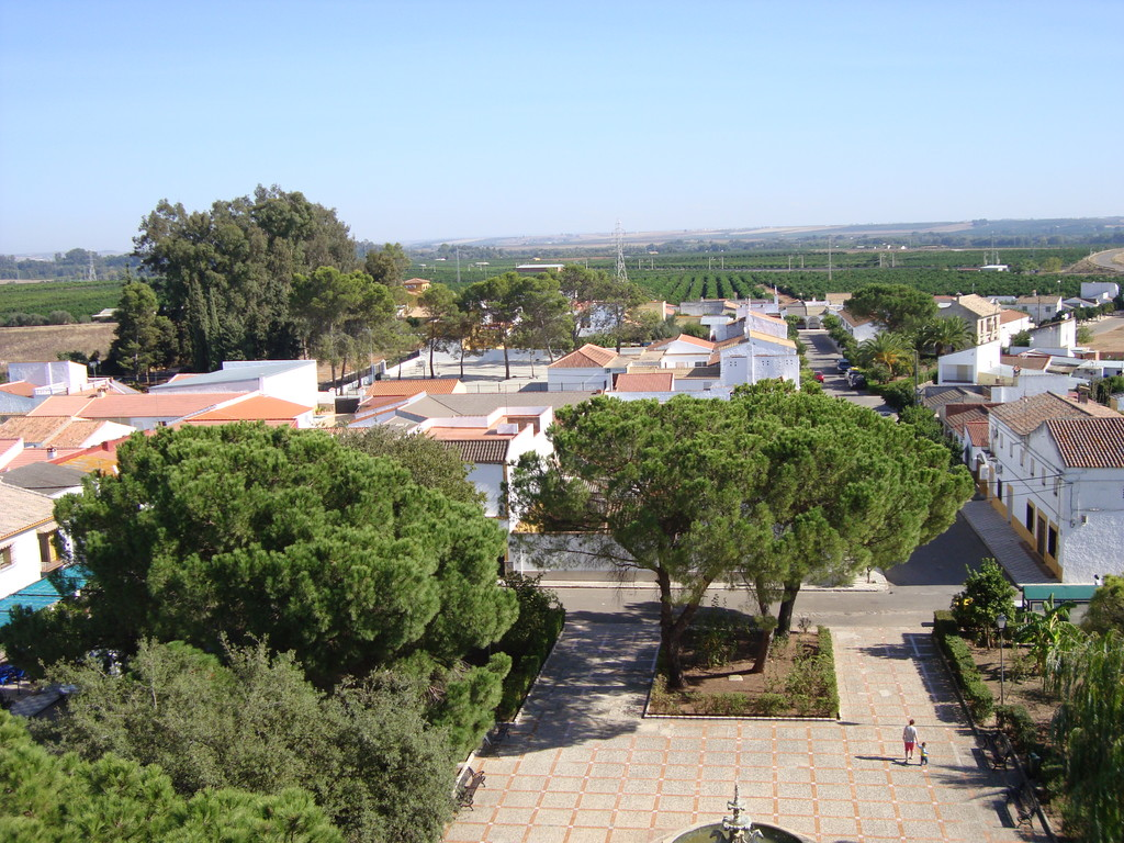Vista desde la torre hacia el Este