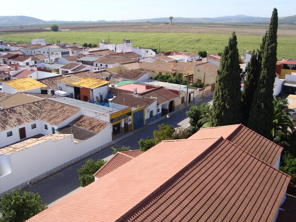Vista desde la torre hacia el Oeste