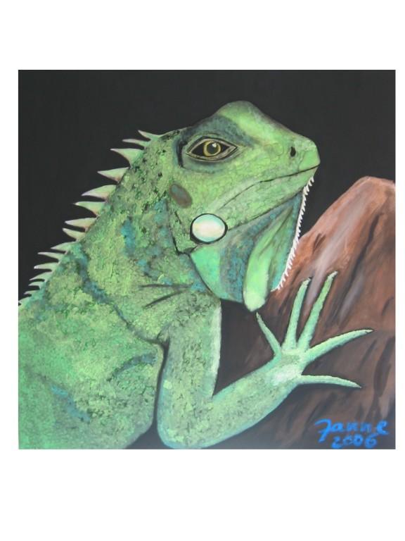 Iguana - verkauft -