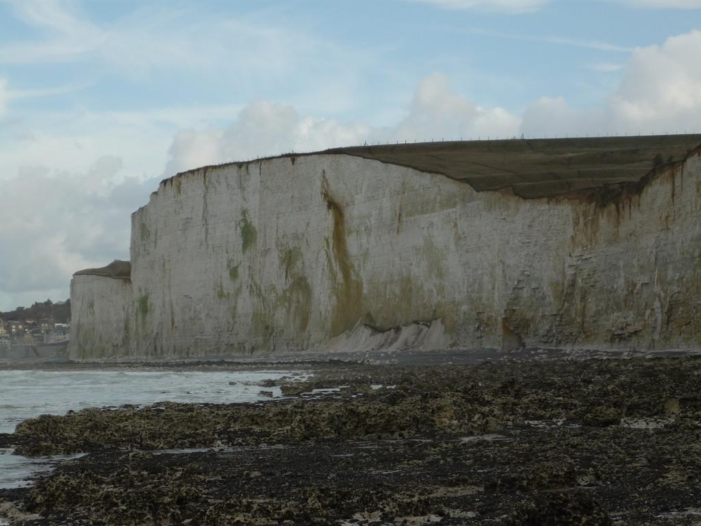 rochers à marée basse