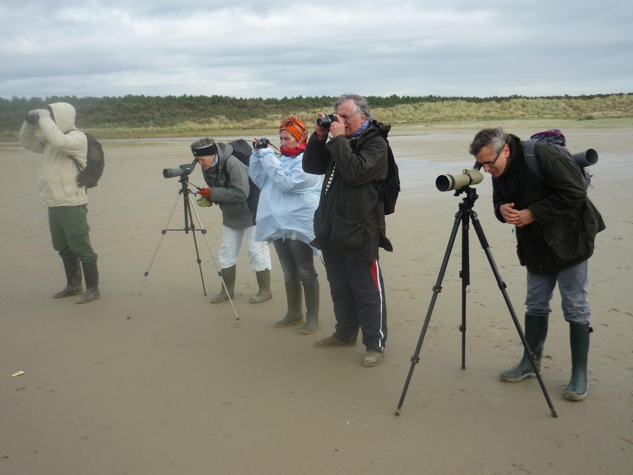 Observation dans la réserve naturelle maritime
