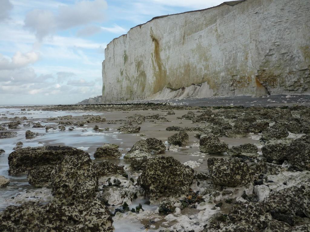Les rochers, lieu de la pêche à pied