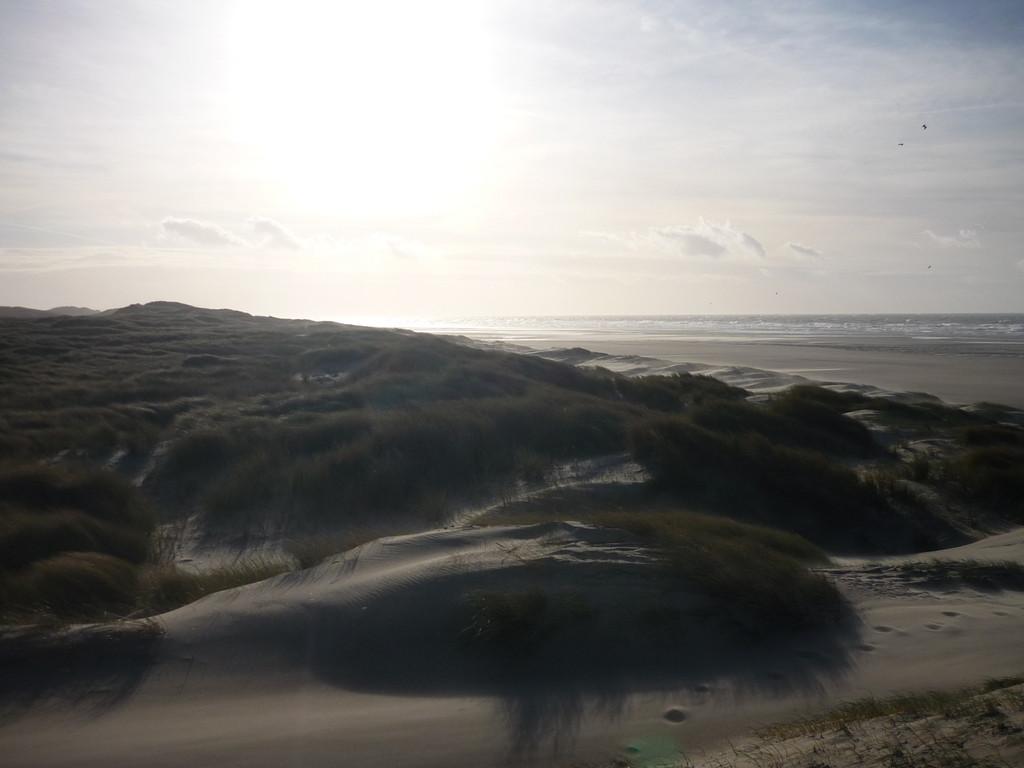 Les dunes de l'Authie
