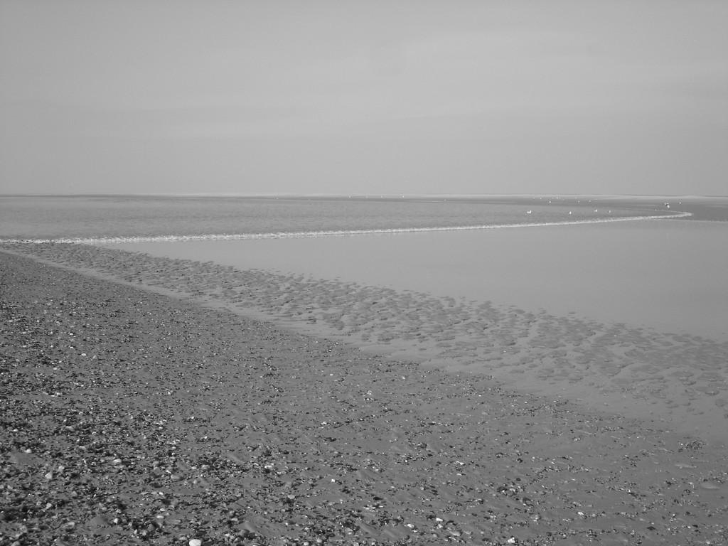 Flot et mascaret en Baie de Somme © Découvrons la Baie de Somme
