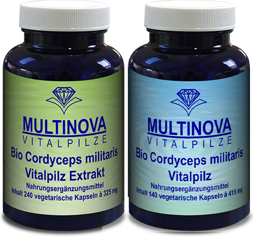Cordyceps militaris Multinova
