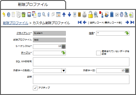 削除プロファイルウィンドウのカスタム削除プロファイルタブ