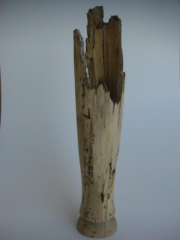Gestockte Buche(Windbruch) D/85mm H/395mm