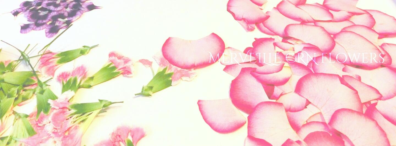 押し花の花びら レッスン