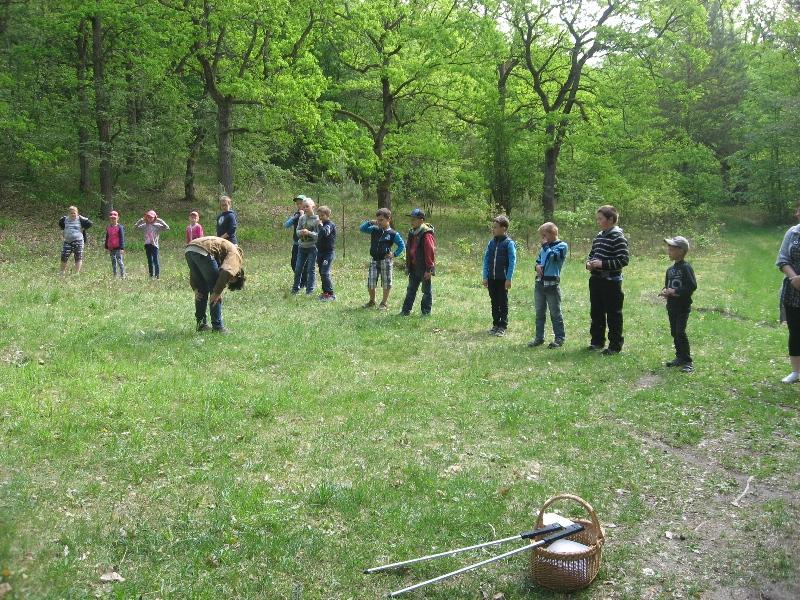 Ruošiamės matuoti medžių aukštį.