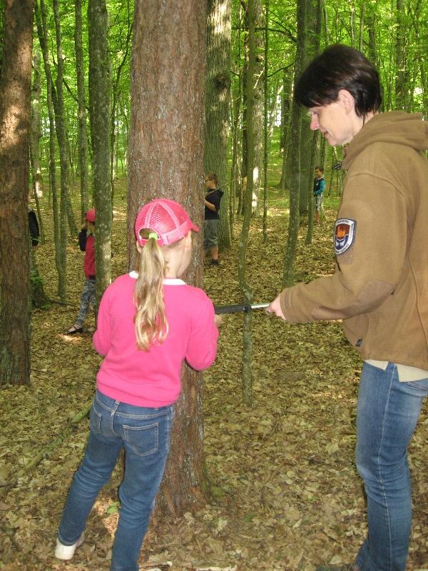 Taip matuojamas medžių storis.