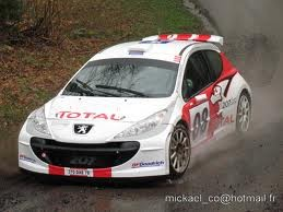 Nicolas VOUILLOZ - 207 S2000 test
