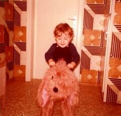 1978 - copilote du chien