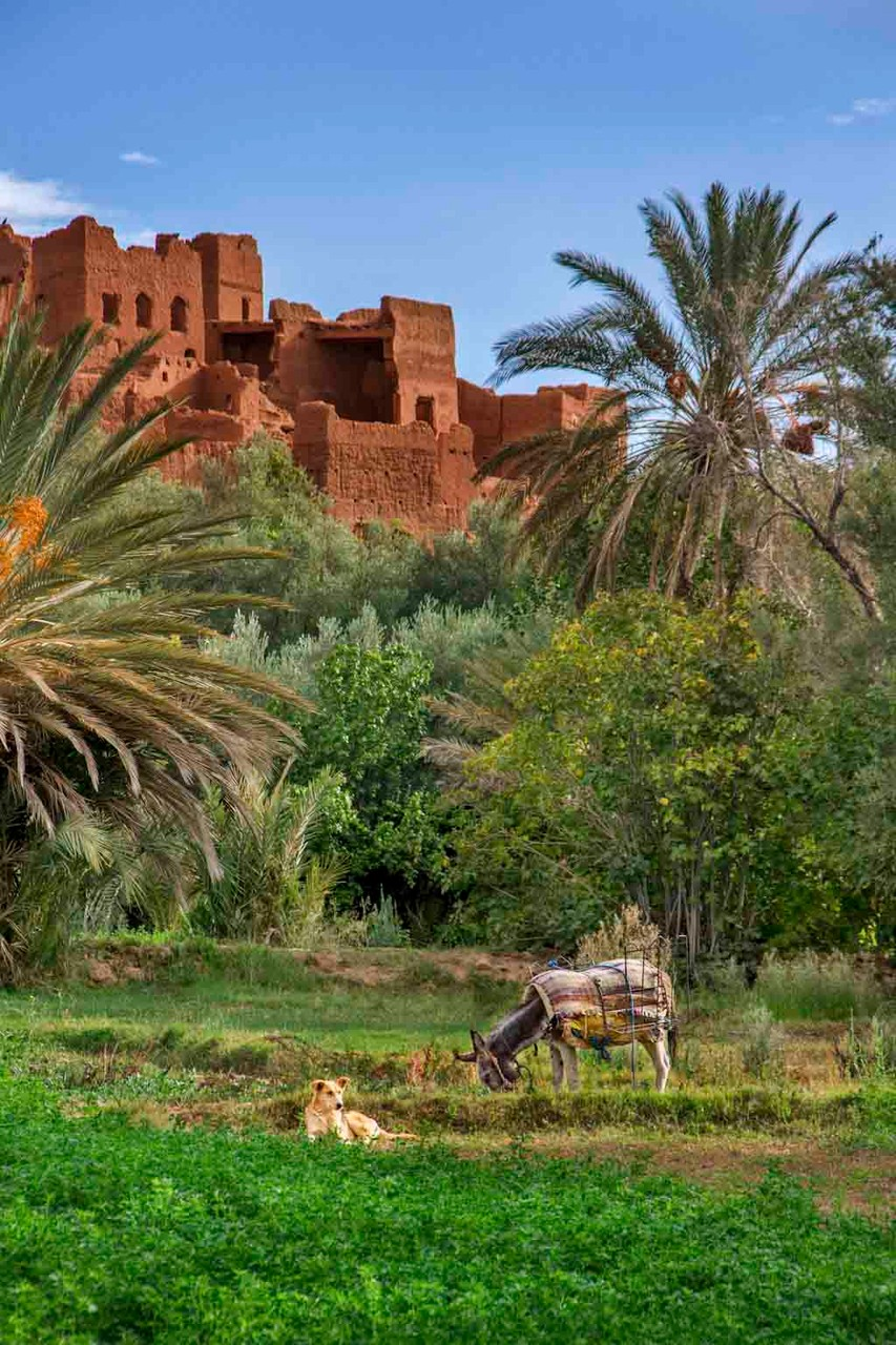 Ait Benhaddou - Morocco © 2014 Nik Schwald.