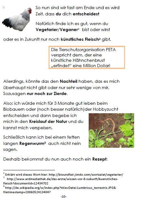 Broschüre Hähnchenhaltung, S. 10