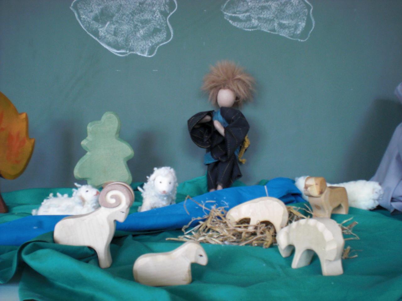 Der Hirte hat viele Schafe.