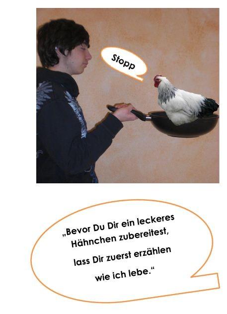 Broschüre Hähnchenhaltung, Titelblatt