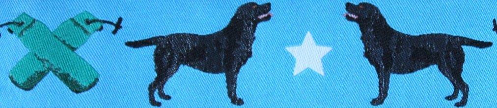 Labrador blau