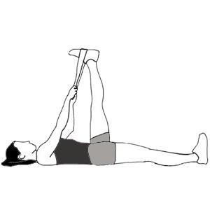ejercicios para elongar musculos isquiotibiales